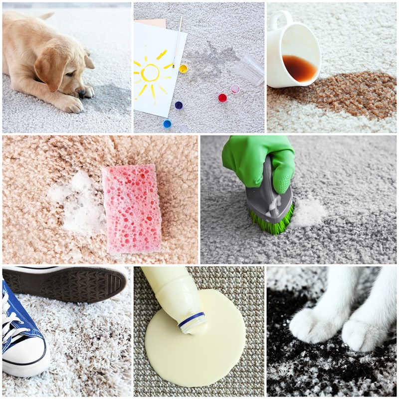 5 Most Common Carpet Cleaning Mistakes