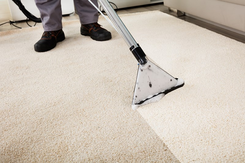 Tips for Using a Shampoo Carpet Cleaner