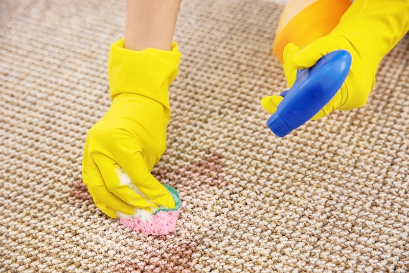 Sssh! Carpet Cleaning Secrets the Pros Don't Want You to Know