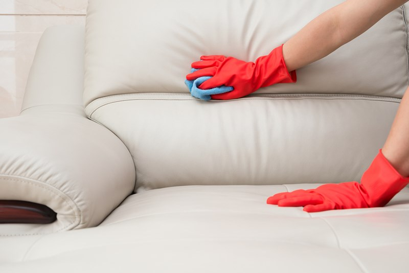Mold Doesn't Have To Be The Death Of Your Leather Couch