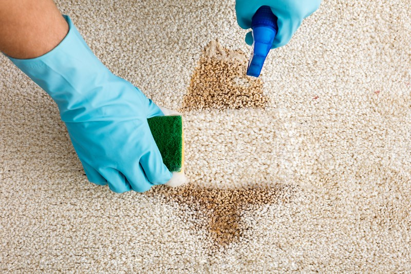how to get rid of vomit smell in carpet