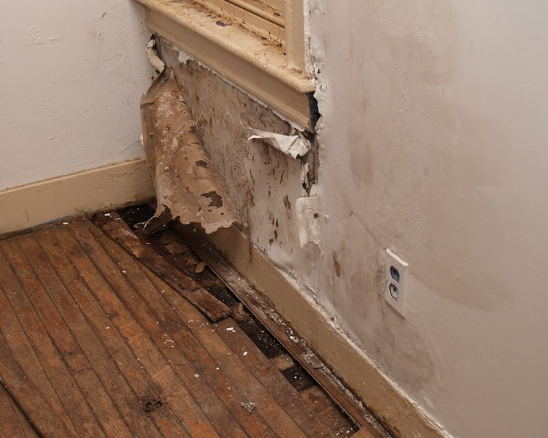 Is Water Leaking In Your Wall? How Do You Tell?