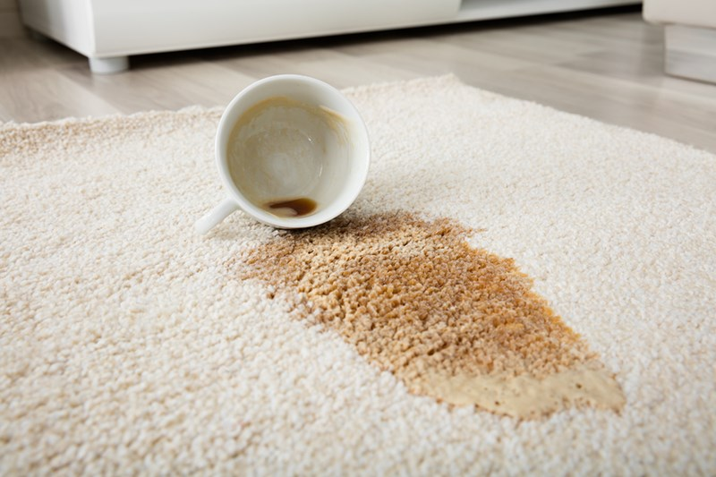 How to Get Rid of Your Carpet's Worst Stains