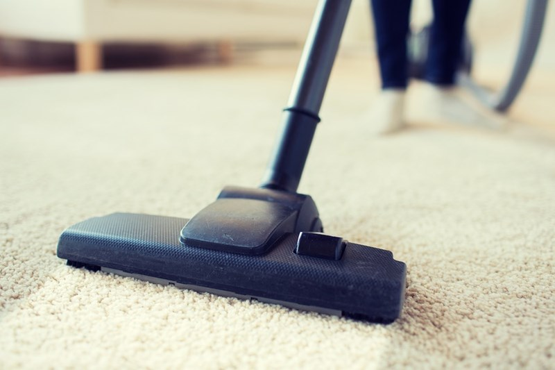 Everything You Need to Know About How to Remove Mold from Carpet