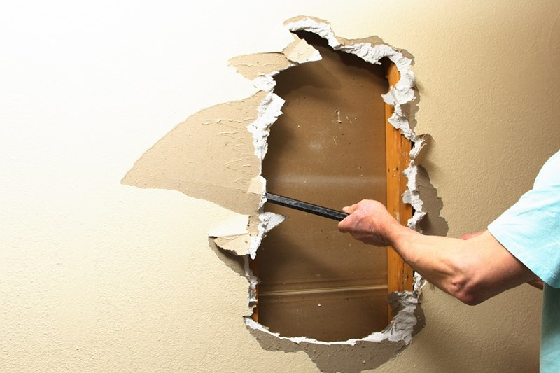 Everything You Need to Know About How to Remove Mold from Drywall
