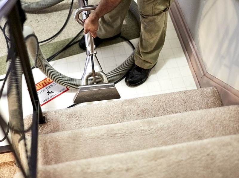 13 Professional Carpet Cleaning FAQs